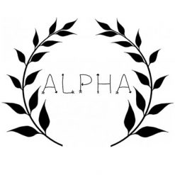 Alpha Team Bows