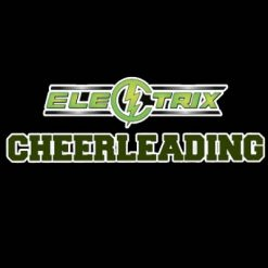 Electrix Team Bows