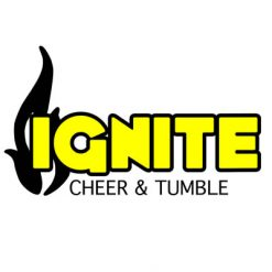IGNITE Team Bows